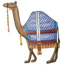 Picture of a camel